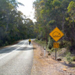 Cyclist on left side of road, near Wombat Crossing sign