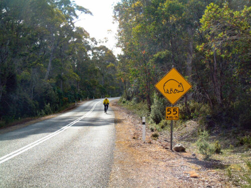 Day 6: Lake St. Clair to New Norfolk/Hobart